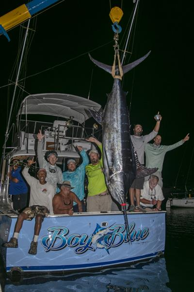 Image of a Blue Marlin caught by Edward Barnes on team Boy Blue at the 2020 Bermuda Big Game